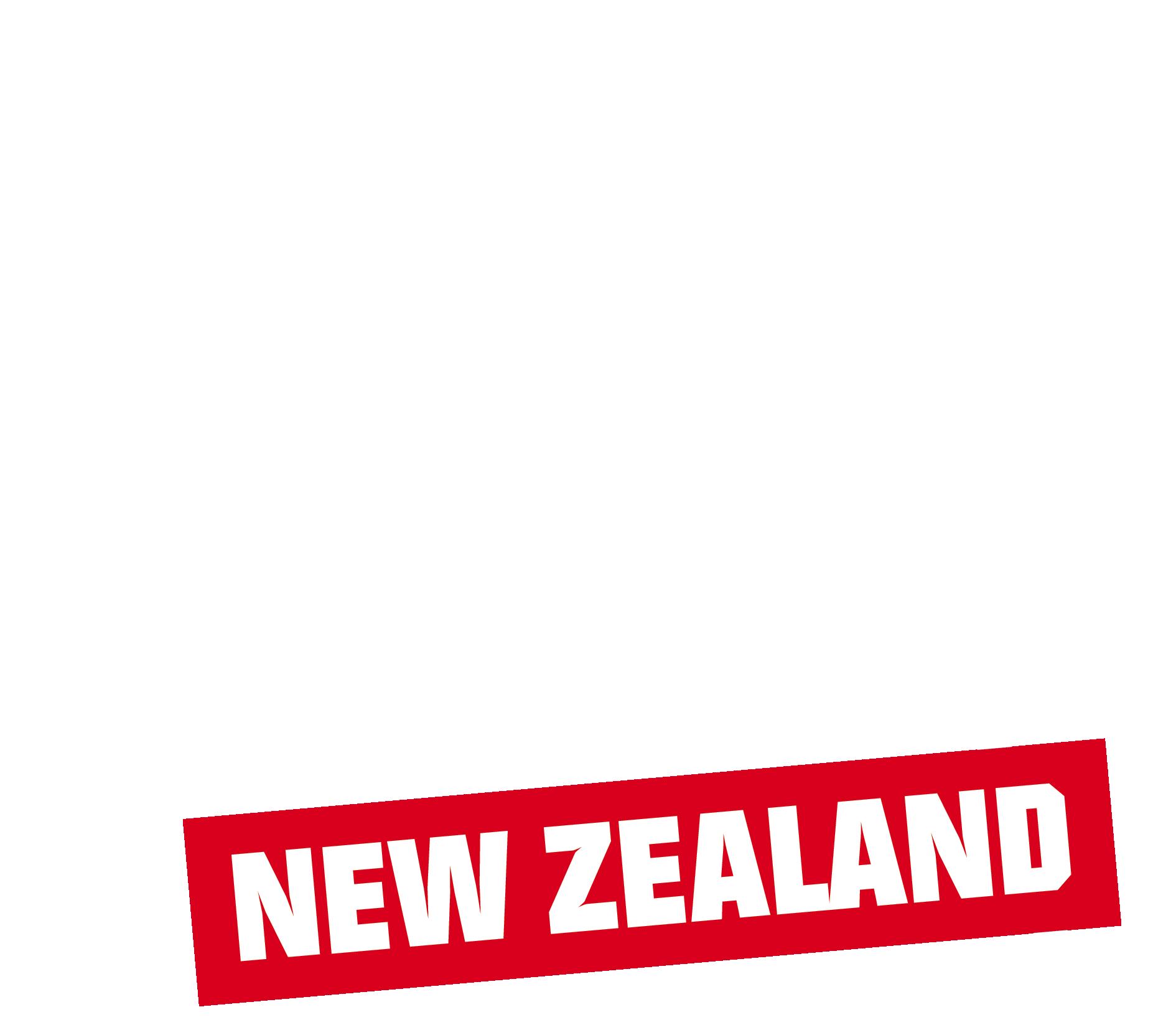 Snapper New Zealand